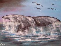 Fluke eines abtauchenden südlichen Glattwales SA by Jürgen Lang