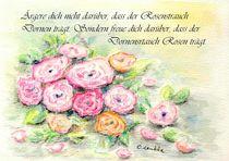 Rosen und Dornen von carolinelembke