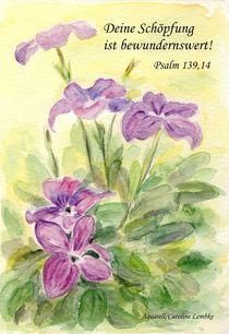 Gottes wunderbare Schöpfung
