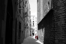 BARCELONA schwarz-weiß-rot XI by julita