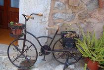 Altes Fahrrad von julita