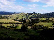 Neuseelands Hügel von Mareia Claudia Lange