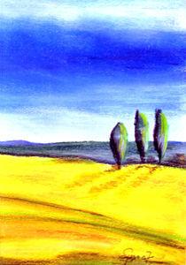 Gelbe Felder 1 von Thomas Spyra