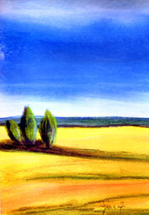 Gelbe Felder 2 von Thomas Spyra