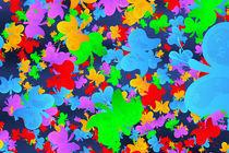 Schmetterlinge von dresdner