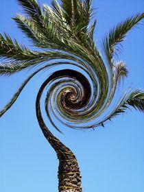 Verdrehte Palme von tabeaskunstwelt