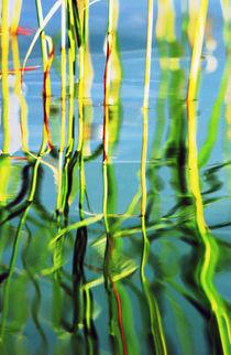 Spiegelung von Andreas Meer