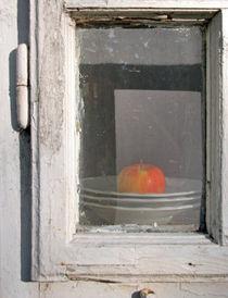 Apfel von Andreas Meer