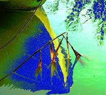 Blau - Grün von Andreas Meer