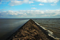 Mole von Andreas Meer