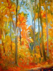 Herbstwaldstudie by Andreas Abel