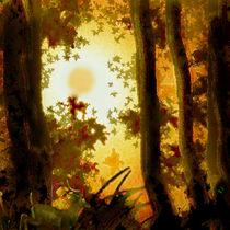 Waldlichtung. by Bernd Vagt