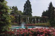 Renaissancegarten mit Springbrunnen und Rosen by Victoria Garden