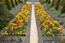 Blumentreppe von Victoria Garden