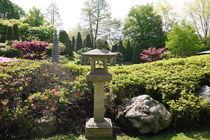 Japanischer Garten von Victoria Garden