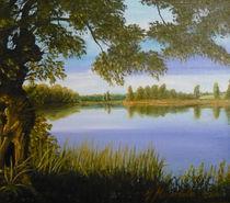 Weide am See by Jürg Meyerholz
