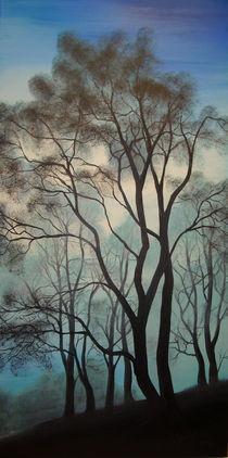 'Im Bann der Natur' von Jürg Meyerholz