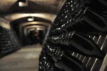 Wine bottles by grundkonzept