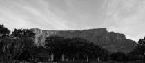 Tafelberg Kapstadt von Dominik Jaentschke