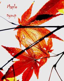 maple syrup von Sarah C. Frerich