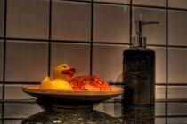 Ente im Stillleben von Martin Lang
