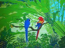 Dschungelpapageien von michaba