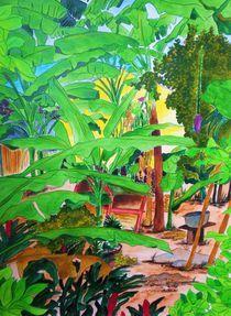Mahe Hausgarten by michaba
