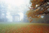 Die 7 Säulen im Herbstnebel von Sebastian Kaps