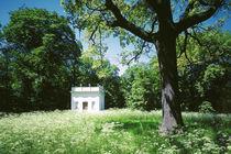 Vasenhaus im Beckerbruch von Sebastian Kaps