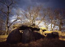 Großsteingrab in Wulfen von Sebastian Kaps