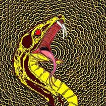 Schlange  von netteart