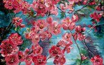 Blütenpracht von Magdalena Schotten