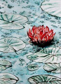 'Seerose' by Magdalena Schotten