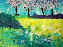 Raps und Kirschblüte by San Linnert