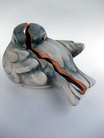 Zerbrochene Taube by Dan Krueger
