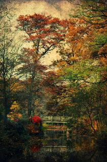 Forest Vintage von AD DESIGN Photo + PhotoArt