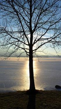 Versteck der Sonne by sansara