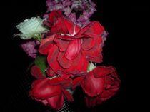 Blumenstrauß im Dunkeln von newartist