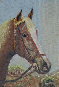 Pferdeportrait von Felix Schwan von kattobello