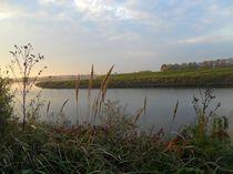 Herbst an der Elbe by Peter Norden