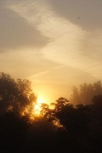 Die Sonne besiegt den Morgennebel von inti