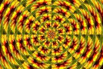 Kokardenblumen- Sonne von inti