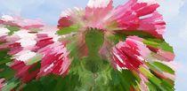 Die Rosenfee by inti