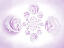 Rosenmuster von inti