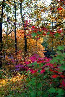 Der Herbst - Ein Maler by inti