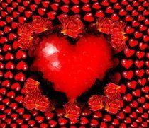 Herzensangelegenheiten von inti