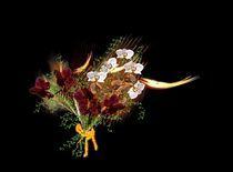 Blumen für die Damen 4 by inti