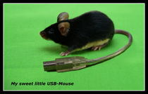 USB-Mouse by Sixtus Riedel