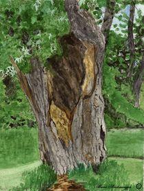 Und dennoch gruent der hohle Baum by Marie Luise Strohmenger