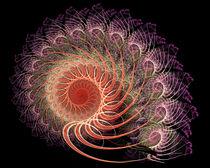 Ammonit von fraktalise